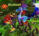 Bluebeak.jpg