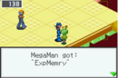 MMBN3ExpMemry.png