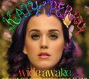 Wide Awake (song)