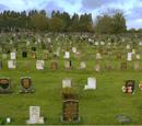 Merthyr Dyfan Cemetery, Barry