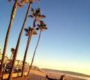 2014.02.21 ★ LA! NY!