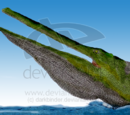Blog de Jason/Stomatosuchus
