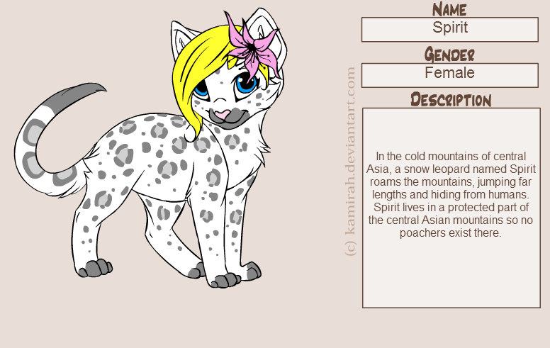 Animal Jam Coloring Pages Snow Leopard : Animal jam snow leopard drawings i love drawing pictures