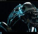 Alien Warrior (Sideshow Collectibles)