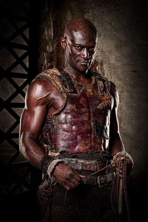 Doctore oenomaus 2