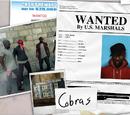 Gangs & Mafias