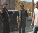 The Civil Border Patrol