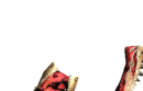 MH4-Sword and Shield Render 011.png
