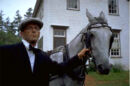 Cousin Jimmy Horse.jpg