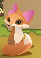 Fox - Animal Jam Wiki