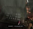 Гробницы (Tomb Raider, 2013)