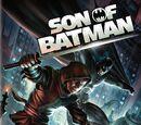 DC Animated Movie Universe Franchise