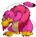 Dovu Pink Before 2012 revamp.png