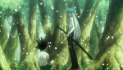 Gon y Kite