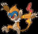 Pokemon: Sinnoh