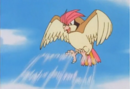 Ash Pidgeotto Gust.png