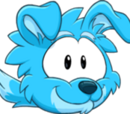 Puffle Chien de Berger Bleu