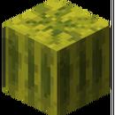 Melon bloque.png
