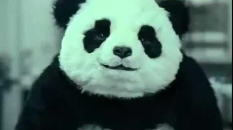 "Never Say No To Panda "" Panda Cheese Commercial """