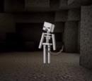 Unnamed Skeleton