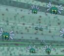 Hair bugs