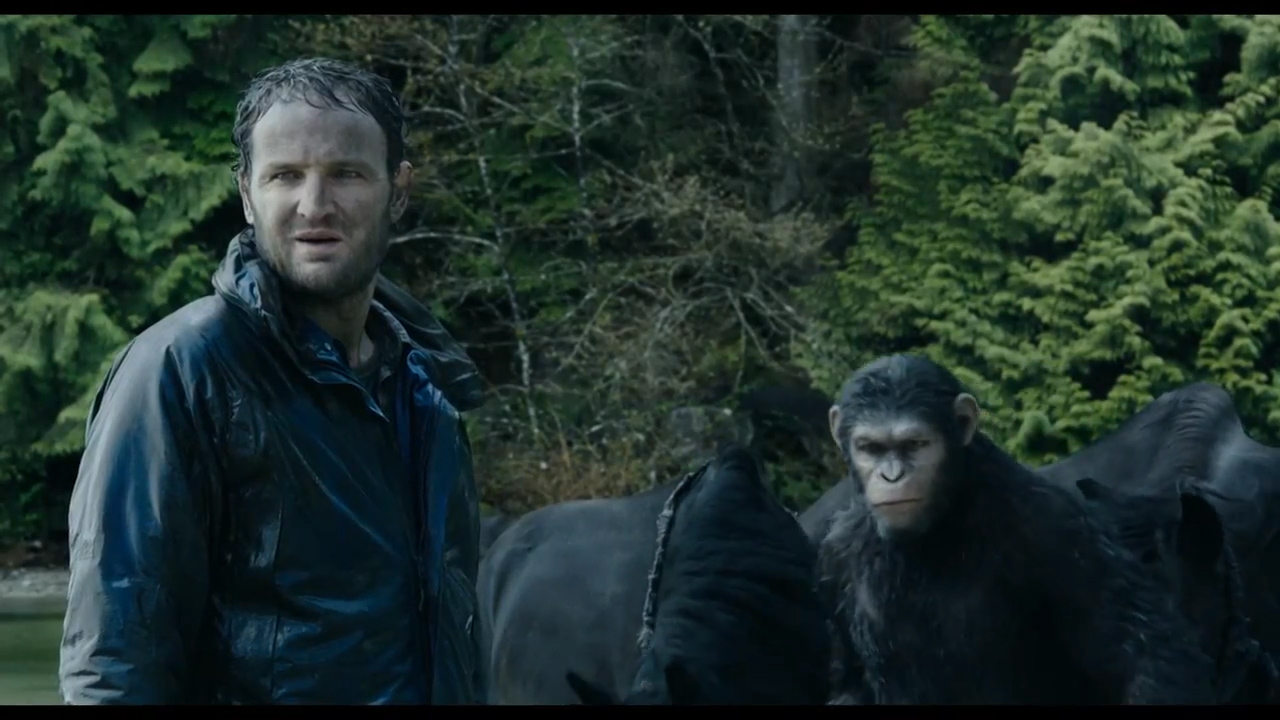 Dawn Of The Planet Of The Apes Caesar And Cornelia