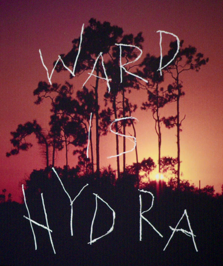 http://img2.wikia.nocookie.net/__cb20140512032640/marvelcinematicuniverse/images/e/e6/WARD_IS_HYDRA.png