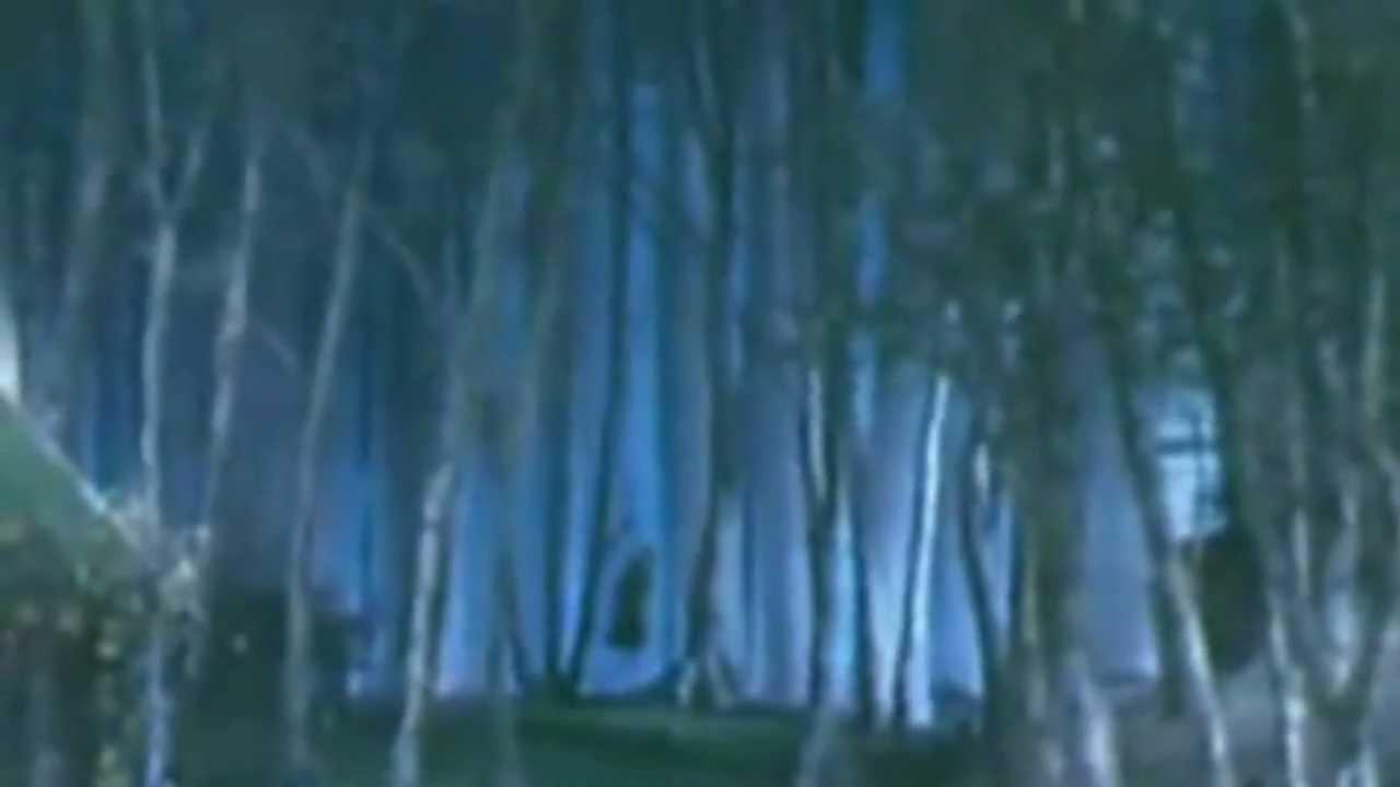 Man Hangs Himself In The Wizard Of Oz