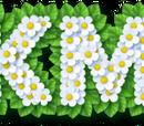 Pikmin (universe)