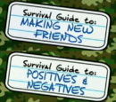 Guide to: Making New Friends and Positives & Negatives