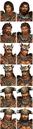 Nanman Officer Portraits (DW8).png