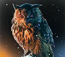 Skinchanger's Owl