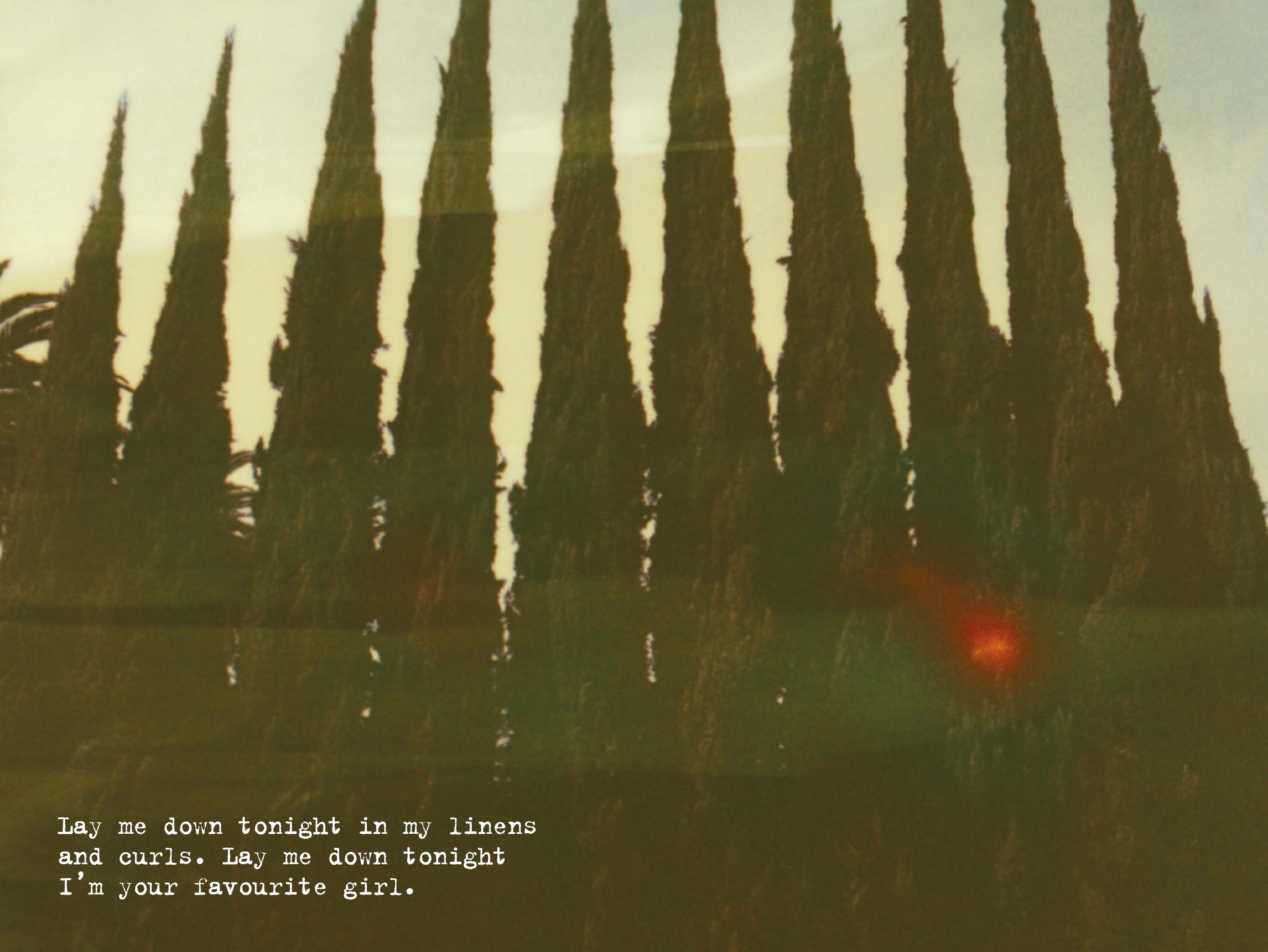 Digital_Booklet_-_Ultraviolence-5.png