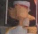Capitan van Vol