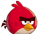 Angry Birds Busqueda