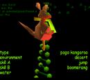 Pogo Kangaroo