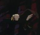 Águila Araña