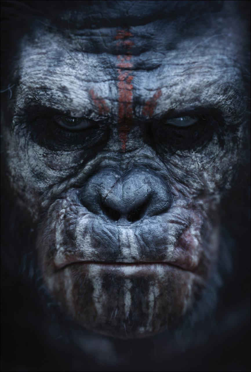 Dawn Rise Of The Planet Of The Apes