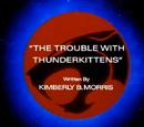 ThunderCats episodes written by Kimberly B. Morris