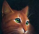 Muinaiset kissat