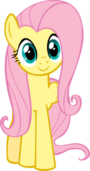 Image - Mlp my views for fluttershy by colorsplasharts-d58udxd.png ...