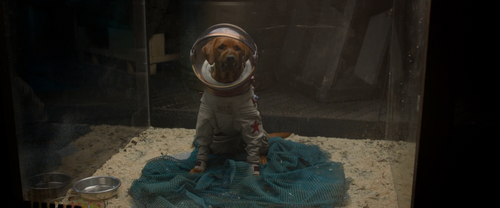 Cosmo The Dog Gotg