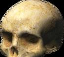 Cráneos de Halo 3