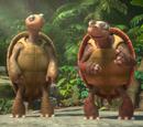 Capoeira Turtles