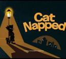 Cat Napped
