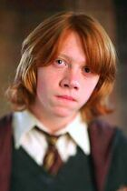 Ron-Harry-Potter-and-the-goblet-of-fire-potterhead-29266755-352-500
