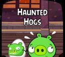 Haunted Hogs