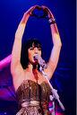Katy Perry Michigan (1).jpg