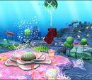 Coral(地図)