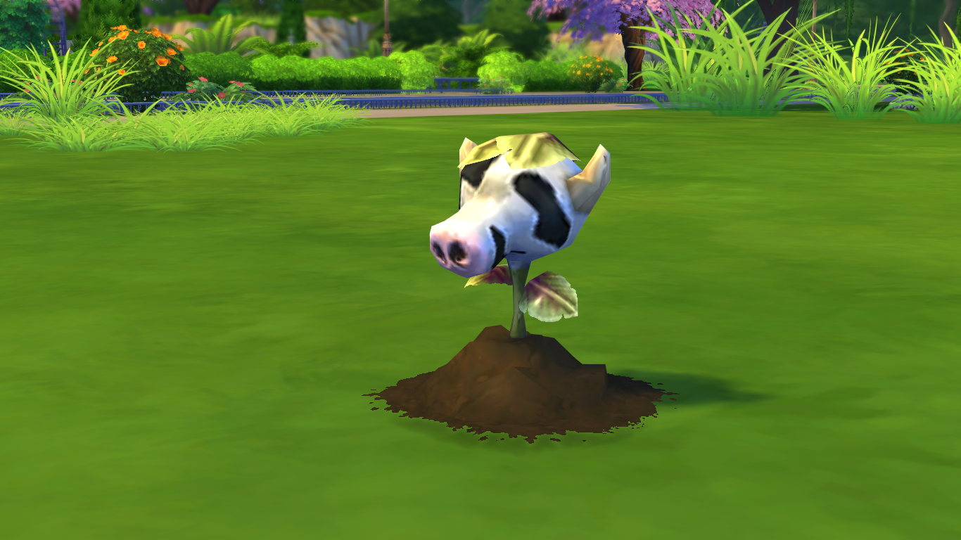 Sims  Cats And Dogs Sim Not Eating